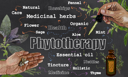 Illustration of Phytotherapy, Plants and Medicine on Blackboard with Pipette, Tablets and Herbs Imagens