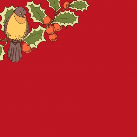 Bird on a holly branch on a red backgrounds Vector