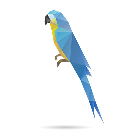 popinjay: Parrot abstract isolated on a white background, vector illustration Illustration
