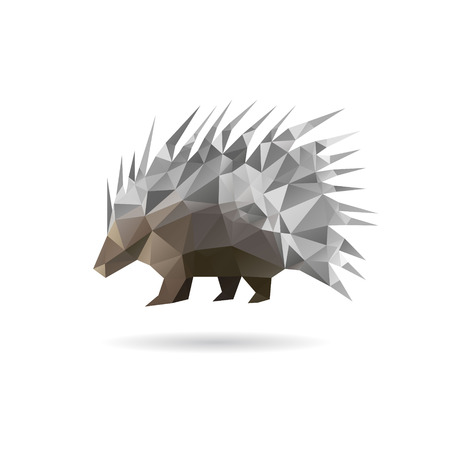 Porcupine abstract isolated on a white backgrounds, vector illustration
