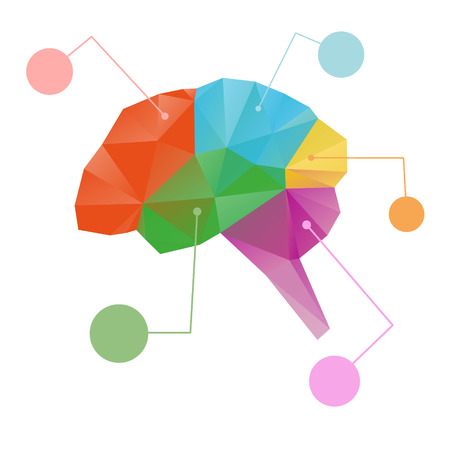 muse: Brain abstract isolated on a white backgrounds, vector illustration Illustration