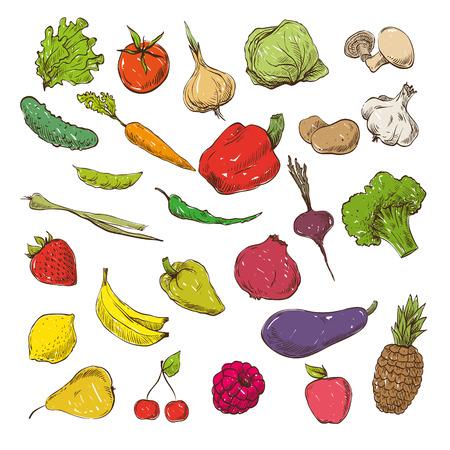 Groenten en fruit hand getekende, vector illustratie