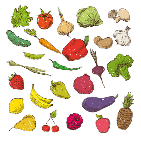 vegetable cartoon: Vegetables and fruits hand drawn, vector illustration