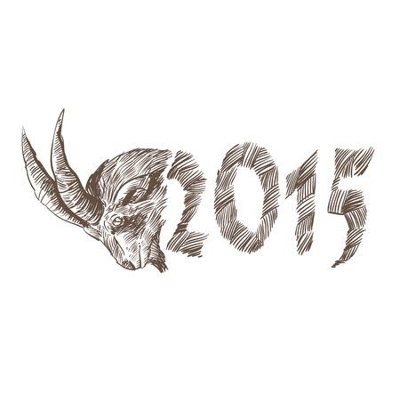 goat head: Goat head hand drawn Illustration
