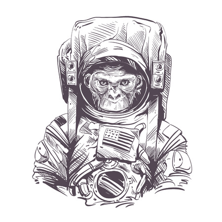 pencil drawing: Monkey in astronaut suit