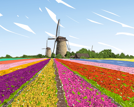 Scenic field of tulips in the background windmills in Holland. Netherlands, Europe. Hand drawn vector illustration Reklamní fotografie - 74686234