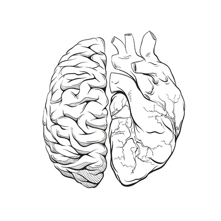 Versus letters human brain right and left hemisphere and heart illustration. Creative concept vector design.