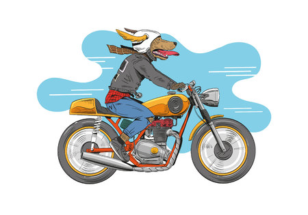 Dog is riding a classic motorcycle. Hand drawn vector illustration design concept.