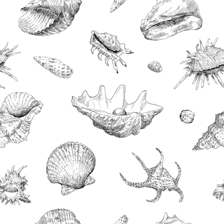 Seamless hand drawn seashells pattern backgrounds. Marine theme wallpaper. Vector illustration.