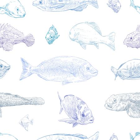 Seamless hand drawn fish pattern backgrounds. Marine theme wallpaper. Vector illustration.