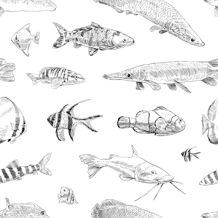 Seamless hand drawn fish pattern backgrounds. Marine theme wallpaper. Vector illustration.