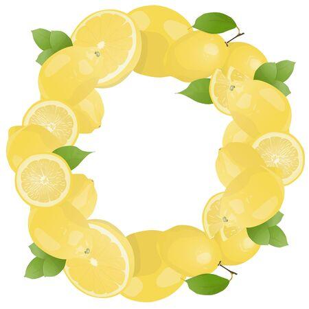 Citrus fruit greeting card template design. Minimalist citrus fruit greeting card template design Illustration