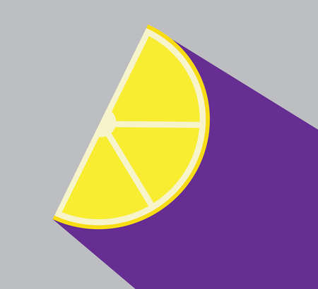 Lemon slice citrus flat vector illustration with shadow