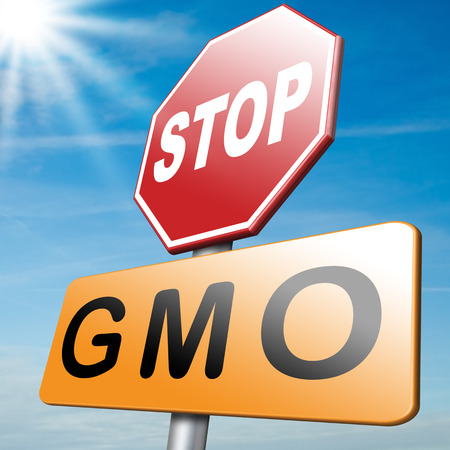 genetically modified crops: no gmo and genetic manipulated organisms or food engineering altered and transgenic organism plant or animal