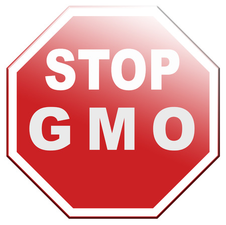 no gmo and genetic manipulated organisms or food engineering altered and transgenic organism plant or animal