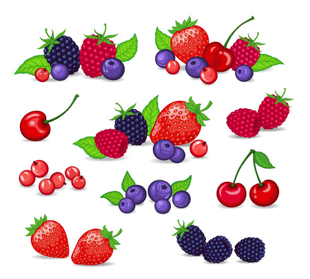 red currant: Berries Set Vector Illustration. Strawberry, Blackberry, Blueberry, Cherry, Raspberry, Red currant. Berries and their Combinations Set Illustration