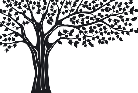 silhuette: Black Silhuette Tree on white Background. Tree Branches Vector Illustration.