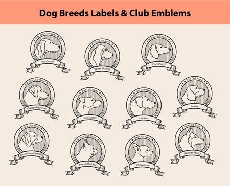Set von Hunderassen Labels, Hundevereine Emblems. Profil Silhouette Hund Gesichter Abzeichen. Irish Setter, Labrador, Golden Retriever, Jack Russel Terrier, Berner, Französisch Bulldog, Basset Hound, Chihuahua, Husky, Beagle, Dackel