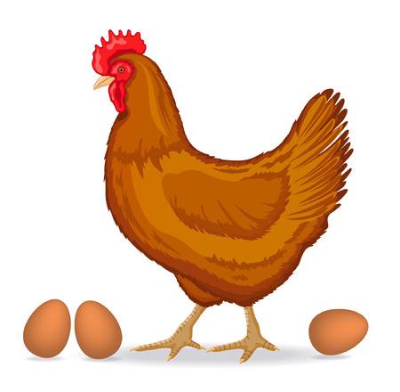 Brown Living Chicken Vector Illustration Vector Illustration