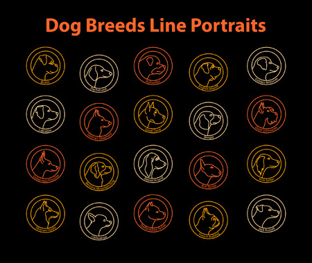 20 Dog Breeds Line Badges Set. Dog Line Profiles Portraits Collection. Boxer, Dachshund, Chihuahua, French Bulldog, Beagle, Labrador, Retriever, Bernese, Jack Russell, German Shepherd, Husky, Doberman, Mastiff, Schnuazer, Setter, Great Dane
