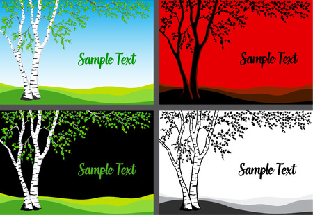 Birch Tree Vector  Illustration. Birch tree in color, silhouette and   black and white template card set.  イラスト・ベクター素材