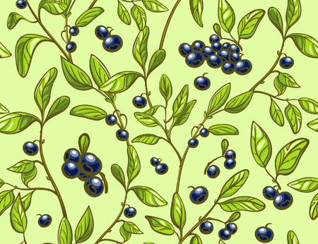 whortleberry: Blueberry seamless pattern. Ful lcolor blueberry branches and berries light green background. Perfect for agriculture themes design, farmers market, package etc. Illustration