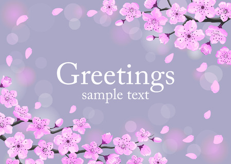 greeting card background: Cherry Blossom Greeting Card. Spring Floral Background Illustration