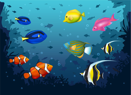 yellow tang: Deep Sea Vector Illustration with Different Colorful Tropical Fishes.