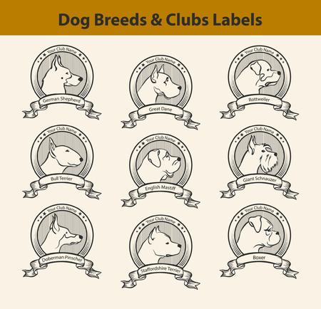 Set van Rassen Labels, Hond Clubs Emblemen. PROFIEL Silhouet van de Hond Gezichten Badges. Great Dane, Bull Terrier, Mastiff, Amstaff, Doberman, Duitse herder, Riesenschnauzer, Rottweiler, Boxer. Hond Profiles Set.