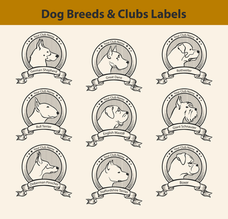 Set of Dog Breeds Labels, Dog Clubs Emblems. Profile SIlhouette Dog Faces Badges. Great Dane, Bull Terrier, Mastiff, Amstaff, Doberman, German Shepherd, Riesenschnauzer, Rottweiler, Boxer. Dog Profiles Set.
