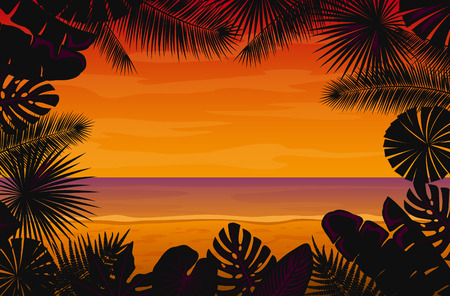 philodendron: Tropical Background with Exotic Tropical Leaves. Fan, Coconut, Banana Palms, Monstera, Aralia, Bird of Paradise, Fern, Alocasia Leaves. Sunset at Seaside Background