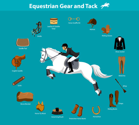 Woman Riding Jumping Horse in show outfit. Equestrian Sport Equipment Infographic Items. Gear and Tack accessories.  Jacket, breeches, gloves, boots, chaps, whip, horseshoes, grooming brush, english saddle, pad, blanket, girth, fly mask, snaffle bit