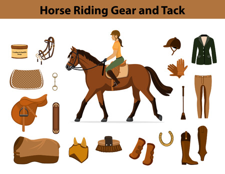 Equestrian Sport Equipment Set. Horse riding gear and tack accessories. Show Jacket, breeches, gloves, boots, chaps,  whip, horseshoes, grooming brush, saddle, pad, blanket, girth, fly mask, snaffle bit etc Illustration