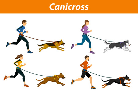 Canicross Outdoor Training with Dogs. Men, women, Group of people running pulled by dogs corss country workout  isoltated vector illustration Illustration