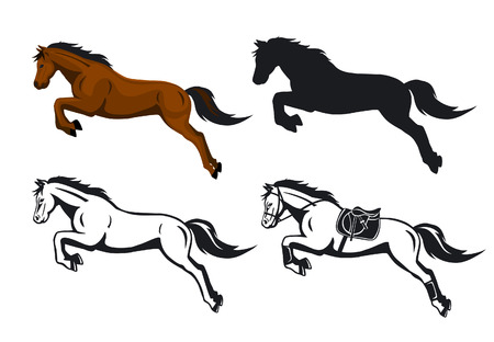 Jumping Horse vector illustration in color, contour and silhouette