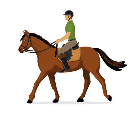 Man Riding a Horse. Isolated. Equestrian Sport