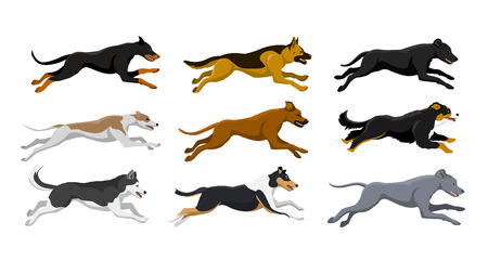 Running dogs vector illustration, including doberman, labrador, whippet, husky, collie, bernese, weimaraner, rhodesian ridgeback, german shepherd