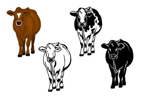 Vooraanzicht koe in bruine kleur, silhouet, contour en patched silhouette set Vector Illustratie