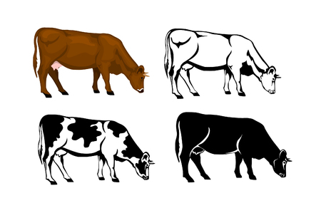 gazing: gazing cow in brown color, silhouette, contour and patched silhouette  set