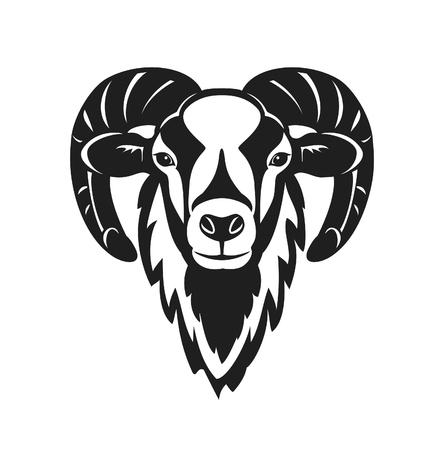 Mouflon schapen hoofd vectorillustratie