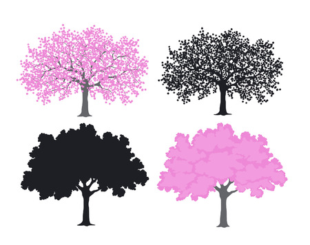 temlate: Sakura, cherry blossom tree in color and silhouettes
