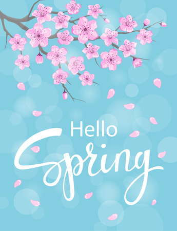 hello spring vertical background with cherry blossoms flowers branches on blue backdrop with bokeh