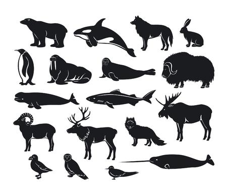 トナカイ、シャチ、イッカク、サメ、ジャコウウシ、フォックス、北極の動物シルエット コレクションは、パフィン、アジサシ、ムース、セイウチ