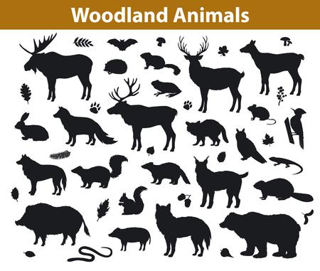 Woodland Waldtiere Silhouetten Sammlung einschließlich Rehe, Bär, Eule, Wildschwein, Luchs, Eichhörnchen, Specht, Dachs, Biber, Stinktier, Igel