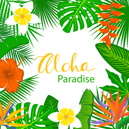 banana: tropical exotic leaves and flowers plants  frame background. floral foliage backdrop with palm tree banana monstera leaf hibiscus heliconia bird of paradise frangipani