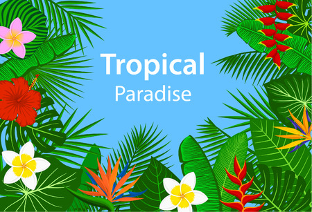 Tropical paradise background with tropic exotic  jungle plants, leaves flowers Illustration