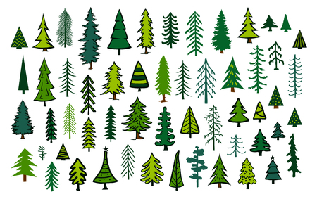 cute abstract conifer evergreen pine fir christmas needle trees collection