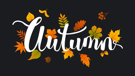 Autumn fall  leaves handwritten background on black backdrop
