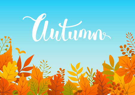 Colorful autumn fall leaves border background