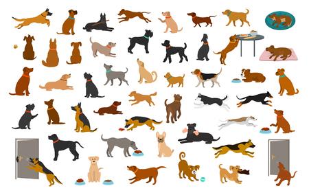 Diferentes razas de perros y conjunto mixto, las mascotas juegan corriendo saltando comiendo durmiendo, sentarse, tumbarse y caminar, robar comida, ladrar, proteger. gráfico de ilustración de vector de dibujos animados aislado Ilustración de vector